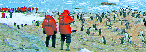 Antarctica travel information