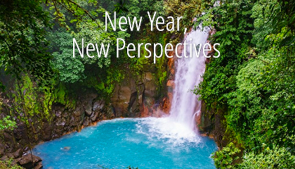 New Year New Perspectives